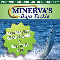 Charter fishing in Cabo San Lucas - TripAdvisor top-rated