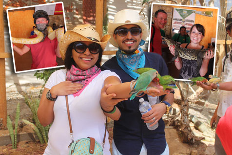 Place to get close up with birds, snakes and reptiles in Los Cabos