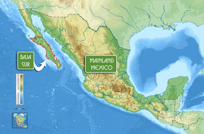 Topographic map of Baja and Mainland Mexico